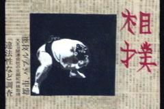 Sumo (format 30/30)