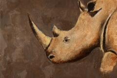 Rhinocéros (format 30/30)
