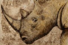 Rhinocéros (format 60/60)