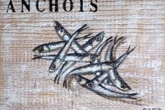Anchois (format 20/26)