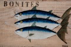 Planche Bonites (format 33/20)