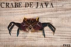 Planche Crabe de Java (format 36/20)