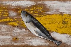 Planche Sardines (format 55/14)